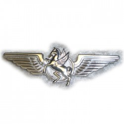 Winged Pegasus  - Pendant / Stock Pin / Brooch
