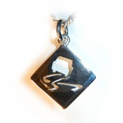 Slippery When Wet Road sign Pendant